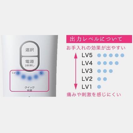 Panasonic光美容器ES-WH93顏・身體專用